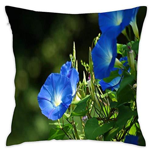 (Hsdfnmnsv Creepers Ipomoea Home Decor Decorative Throw Pillow Cover Case Sofa Waist Coach Pillowcase Cushion Cover 18