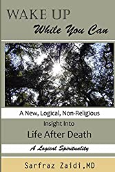 Wake Up  While You Can: A New, logical, Non-religious Insight Into Life after Death
