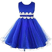 Shiny Toddler Little Girls Lace Applique Flower Birthday Party Dress