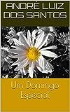 Um Domingo Especial (Portuguese Edition)