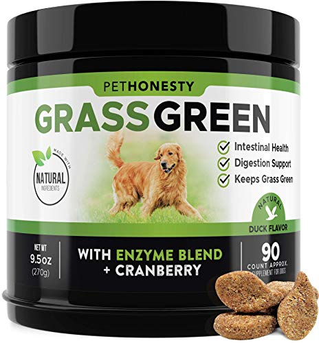 PetHonesty GrassGreen Grass Burn