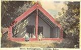 Rotorua New Zealand Maori Meeting Home Tinted Real Photo Antique Postcard K44627