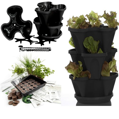 Garden Stacker Planter + Indoor Culinary Herb Garden Kit - Grow Cooking Herbs - Seeds: Parsley, Thyme, Cilantro, Basil, Mustard, Peppermint, Dill, More - Includes Stackable Planter (Black)
