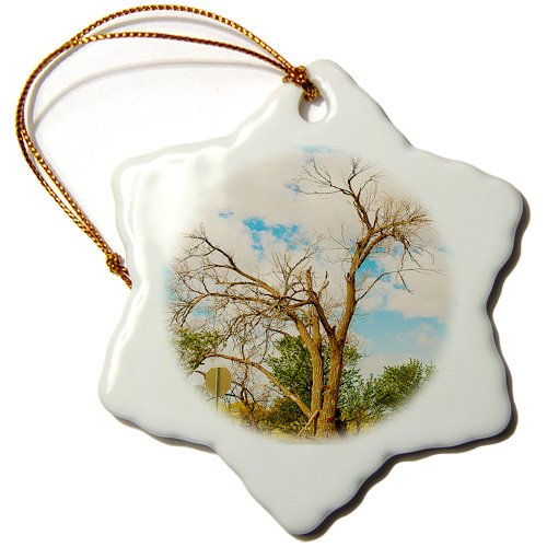 orn_50472_1 Jos Fauxtographee Realistic - An Awesome Shaped Old Tree On Highway 18 Near Enterprise, Utah in Southern Utah in Vibrant Colors - Ornaments - 3 inch Snowflake Porcelain Ornament