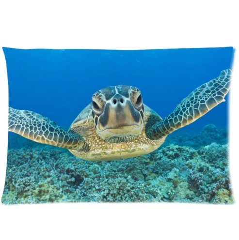 Fabulous Zippered Pillow Covers Standard product image