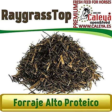 Open&Feed Raygrass Top 30 Kg (Palet 12 Unidades)