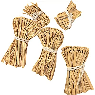 Wizard of Oz Straw Kit Costume Accessory: Toys & Games