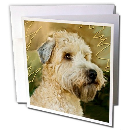 3dRose Soft Coated Wheaten Terrier Portrait - Greeting Cards, 6 x 6 inches, set of 12 (gc_4808_2)
