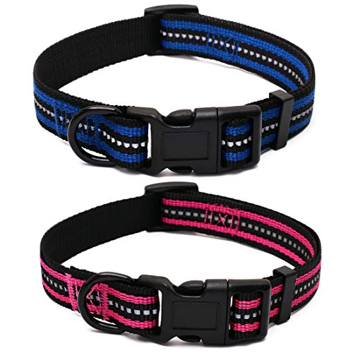 Mile High Life Night Reflective Double Bands Nylon Dog Collar (2 Pack Blue/Hot Pink, Large Neck 15