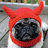 Photographic Greeting Card (PR5139) - Blank/Birthday - Little Devil - Pug in Crochet Hat - Funny Animals Range