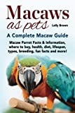 Macaws as Pets: Macaw Parrot Facts & Information, where to buy, health, diet, lifespan, types, breeding, fun facts and more! A Complete Macaw Guide