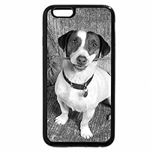 iPhone 6S Plus Case, iPhone 6 Plus Case (Black & White) - Cute Puppy Dog Holding a Flower By Mouth