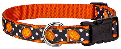 Country Brook Design Deluxe Moonlight Grin Ribbon Dog Collar - Extra Large