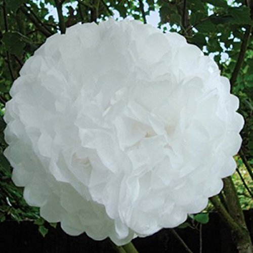 Tinksky 10pcs 25CM Tissue Paper Pom Poms for Wedding / Party / Baby Shower Supplies Christmas Decoration (White)