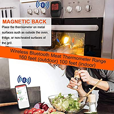 VISTION Bluetooth Cooking Thermometer