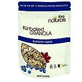 Allergy Friendly, Gluten Free >> Blueberry Maple Granola - Libre Naturals, 340 gram pouch x 6 pack