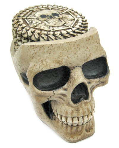 (Skull Coaster Set (6 Coasters) Collectible Skeleton Gothic Decoration)