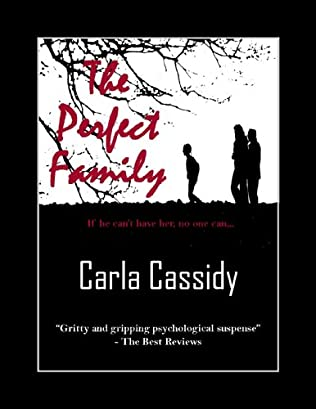 book cover of The Perfect Family