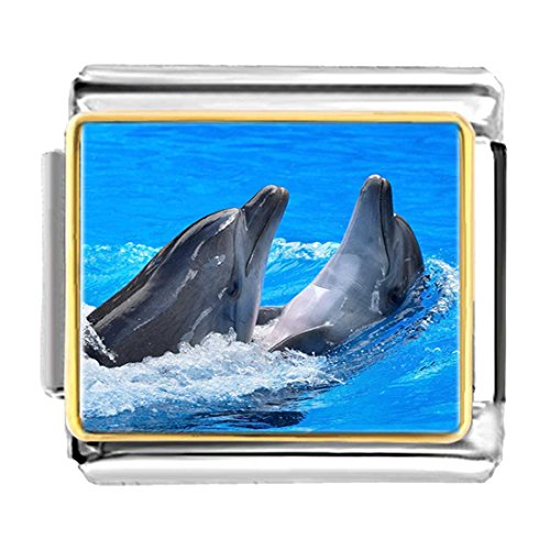 - GiftJewelryShop Gold Plated Two Cute Playing Dolphin Bracelet Link Photo Italian Charms
