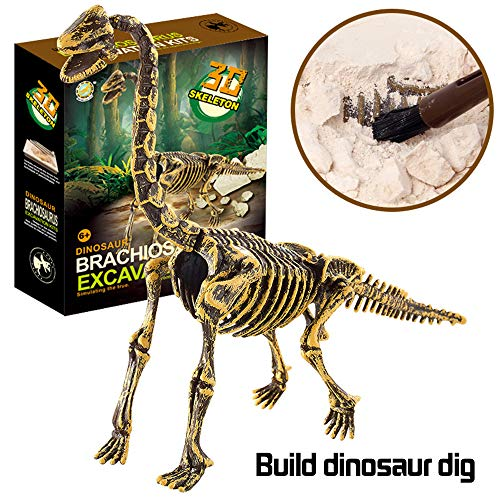 AMOFINY Fashion Baby Toys New Dinosaur Science Educational Dig Kit, Dinosaur Fossil Excavation -