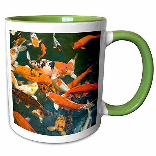 3dRose Danita Delimont - Fish - Ornament Koi, Shopping Mall, Malacca, Malaysia -AS23 SWS0092 - Stuart Westmorland - 11oz Two-Tone Green Mug - Mall Westmorland