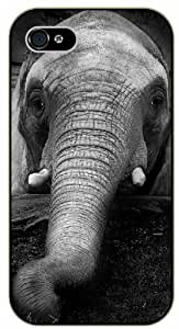 Sleeping elephant - iPhone 5 / 5s black plastic case / Animals and Nature by icecream design