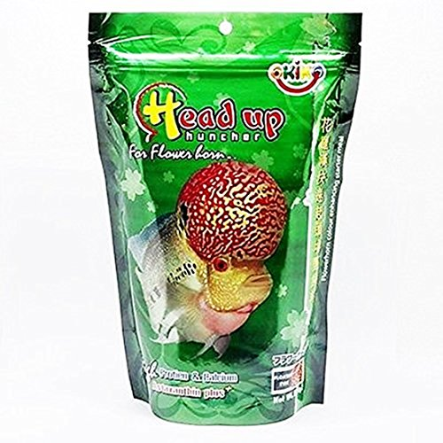 - OKIKO Fish Food Size M 3.5 oz (100g) Head Up Hunch High Protein & Calcium with Astaxanthin Plus Flowerhorn Cichlid