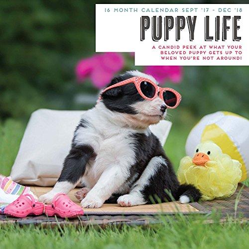 Puppy 2018 Life Calendar