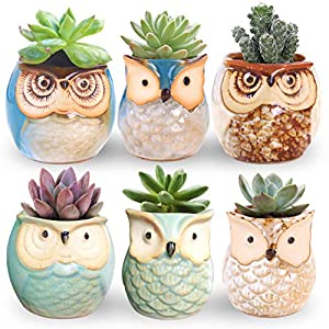 ROSE CREATE 6 Pcs 2.5 Inches Owl Pots, Little Ceramic Succulent Bonsai Pots with a Hole - Pack of 6 3