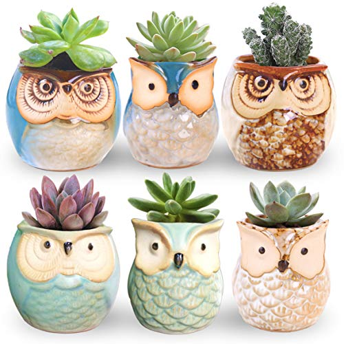 ROSE CREATE 6 Pcs 2.5 Inches Owl Pots, Little Ceramic Succulent Bonsai Pots with a Hole - Pack of 6 -