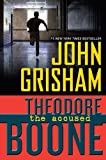 Theodore Boone Series