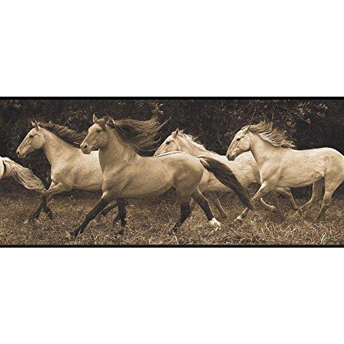 York Wallcoverings BP8291BD Running Wild Border, Brown, Black, Cream