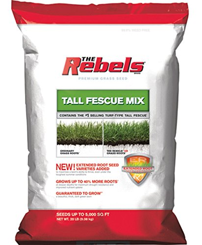 Pennington Seed Rebel Turf Type Tall Fescue 5000 Sq. Ft. 20 Lb.