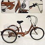 51PuoKVR3CL. SS150 YiWon Triciclo per Adulti, 24 Pollici 6 Ingranaggi 3 Ruote Biciclette Senior Triciclo Cargo Biciclette Shopping Triciclo…