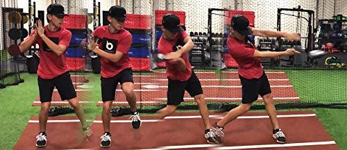 Hitting Disk Baseball & Softball Swing Training Aids (12 Pack)