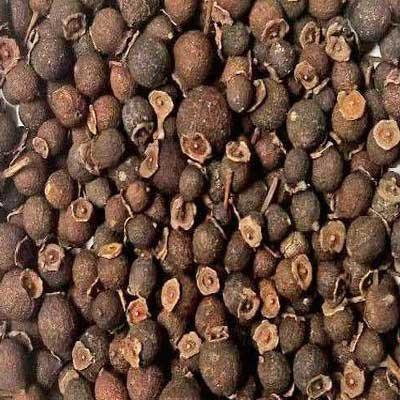 Indus Organics Allspice Berries, 12 Oz Jar, Premium Grade, High Purity, Freshly Packed