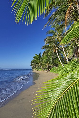 Posterazzi Hawaii Molokai A Small Deserted Beach On The South Shore Lanai In The Background Poster Print (22 x 34) (Best Beaches On Molokai)