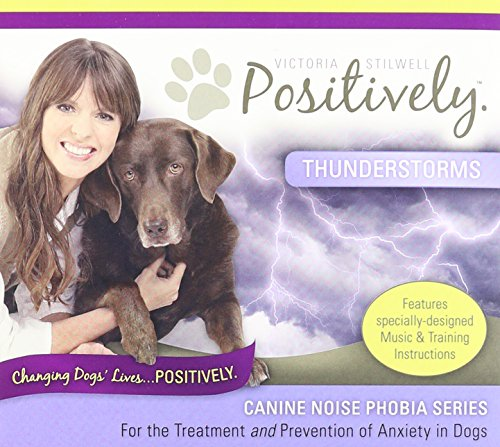 Canine Noise Phobia Series / Thunderstorms