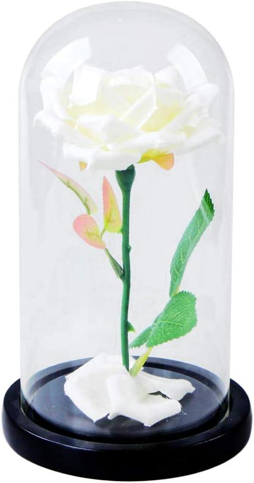 LOVIVER Cúpula Transparente con Flor Rosa Decoración Casera ...