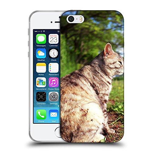 Just Phone Cases Coque de Protection TPU Silicone Case pour // V00004306 graisse chat se trouve dans le jardin // Apple iPhone 5 5S 5G SE