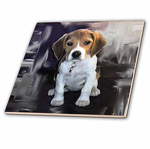 3dRose ct_4021_1 Beagle Ceramic Tile, -