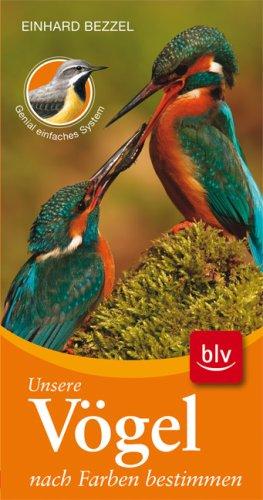 Unsere Vögel nach Farben bestimmen: Stopper: Neu: Genial einfaches System