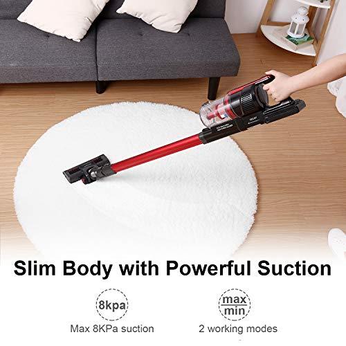 Buy lightweight vacuum for hardwood floors and pet hair