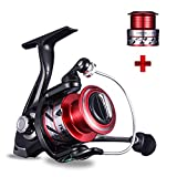 NOEBY Fishing Reels + Shallow Spool 5+1BB Spinning Reels Ultra Smooth Reel for Saltwater or Freshwater Bass (Red 3000 + Shallow Spool 3000) For Sale