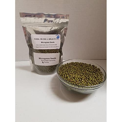 """Wholesale """"COOL BEANS n SPROUTS"""" Brand, Mung Bean Seeds for Sprouting Microgreens ,1 pound, A superfood packed with antioxidants and health-promoting nutrients. A family run USA business, Jacobs Ladder Ent. free shipping"""