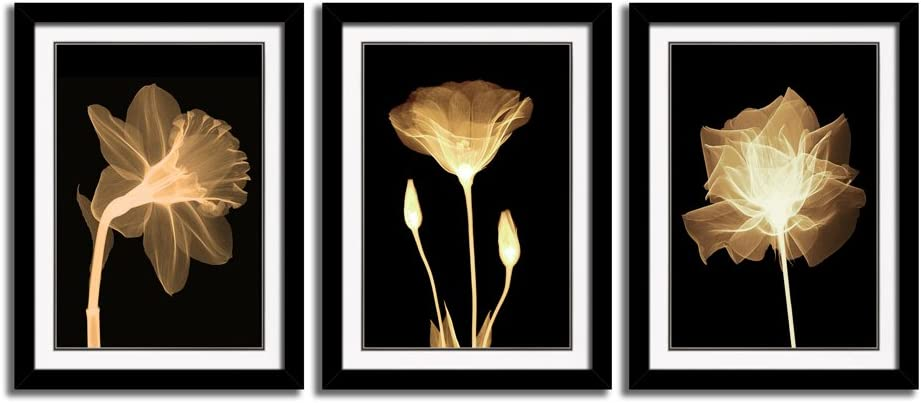 3 Panel Picture Frames Giclee White Mat Artworks Black White and Gold Wall Art Canvas Prints Decor Framed Flowers Painting Poster Printed On Canvas Poppy for Home Decorations (A, S)