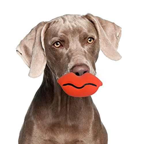 Gnawsome Silly Faces Lips Dog Chew Toy