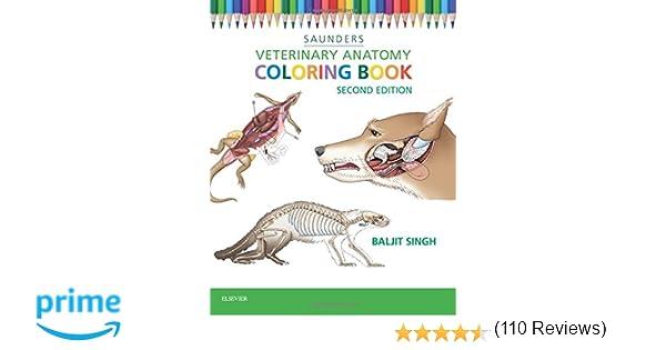 Veterinary Anatomy Coloring Book 2e 9781455776849 Medicine Health Science Books Amazon