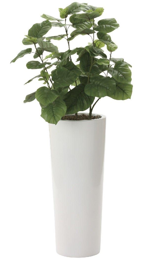 観葉植物 造花 「ウンベラータ 140cm /プレミアム鉢仕様」 光触媒(空気清浄) インテリアグリーン B06WRT1NVL