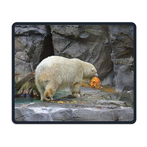 (Personalized Rectangle Mouse Pad,Printed Halloween Polar Bear Computer Mouse Pad 7.08 (L)x 8.66 (W))